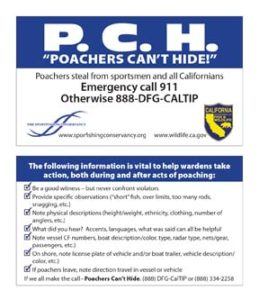 pchwalletcard lr 1